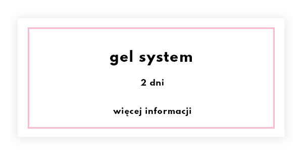gel-system.png